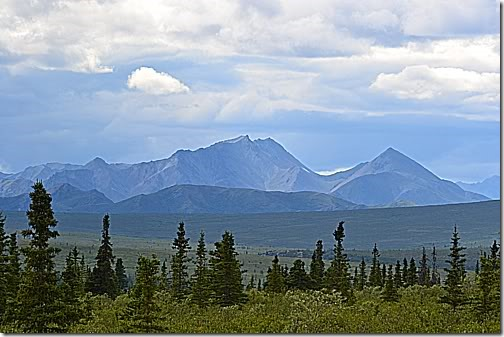 Road Trip to Denali | #WordlessWednesday 7-18-12