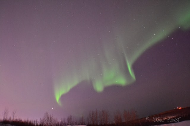 The Last One | #AuroraBorealis