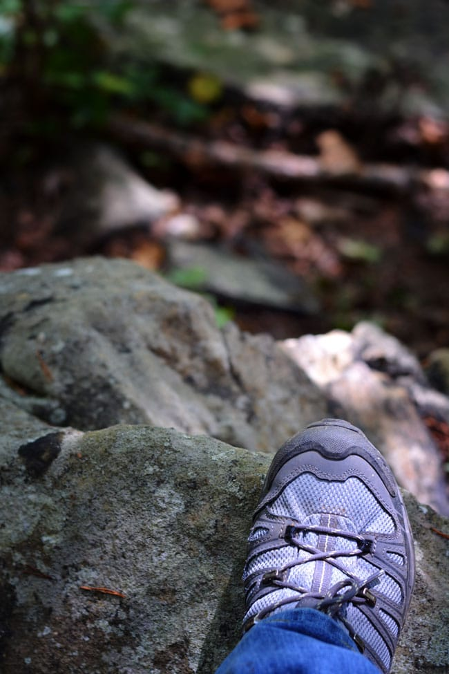 Yellow Bluff Trail