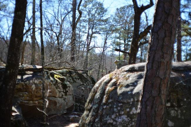 Bouldering at Horse Pens 40 in Steele, Alabama | Cosmopolitan Cornbread