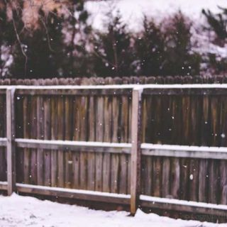 My Favorite | A Snowy Morning in Alabama - from Cosmopolitan Cornbread
