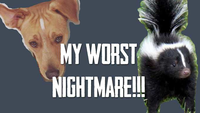 My Worst Nightmare – Duke vs. a SKUNK! | Vlog
