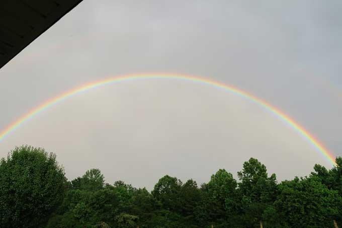 Wordless Wednesday: Rainbow   A Photography post from Cosmopolitan Cornbread
