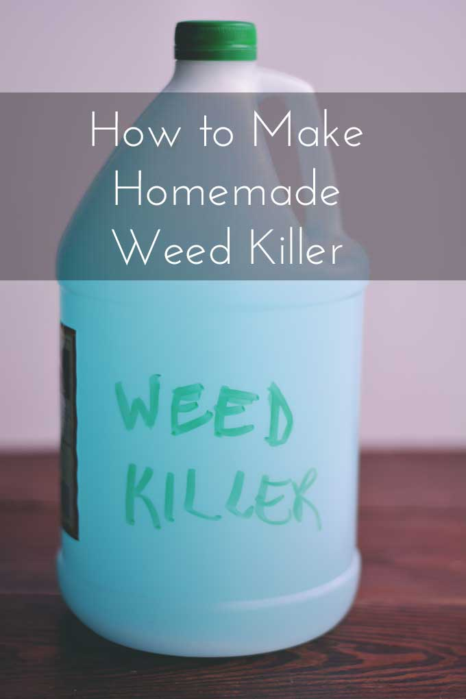 How to Make Homemade Weed Killer - No poisons and NO WEEDS! Find out how from Cosmopolitan Cornbread