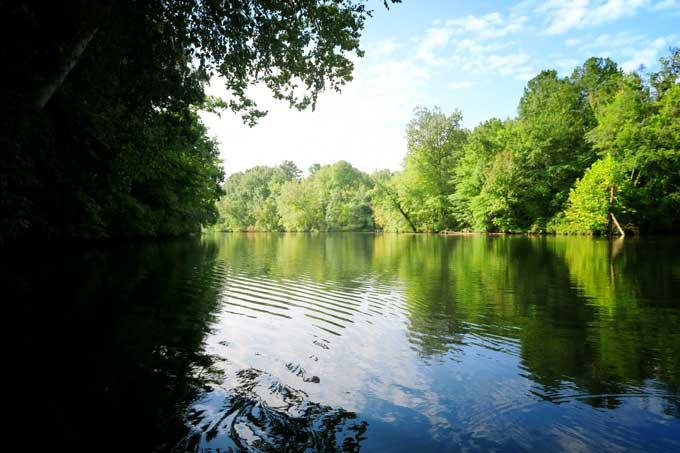 Kayaking on Flint Creek in Hartselle, Alabama | Cosmopolitan Cornbread