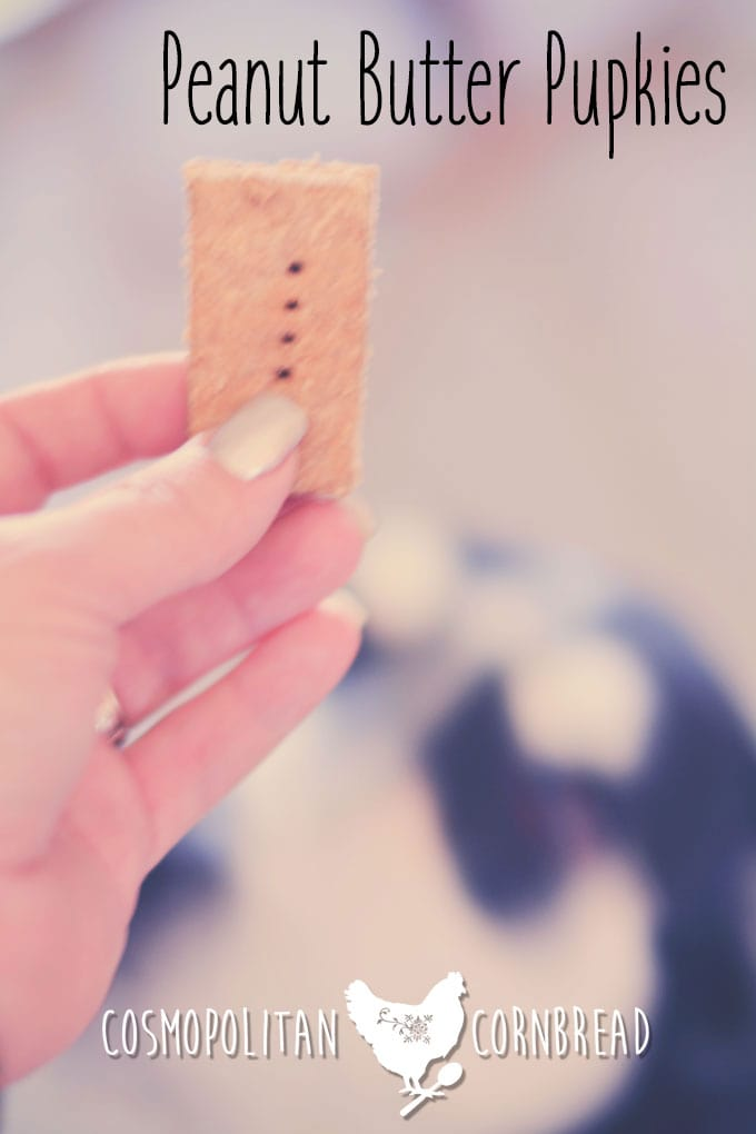 Peanut Butter Pupkies | Homemade Dog Biscuits - get this easy recipe from Cosmopolitan Cornbread