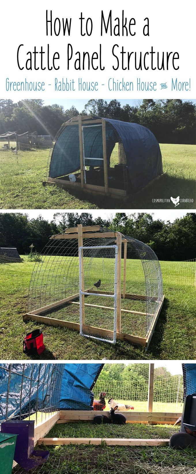 How to Make a Cattle Panel Structure | Make a Greenhouse, Chicken House, Rabbit House and More!