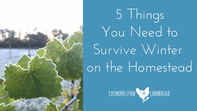 5 Things You Need to Survive Winter on the Homestead | Cosmopolitan Cornbread