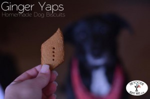 Ginger Yaps - Homemade Dog Biscuits