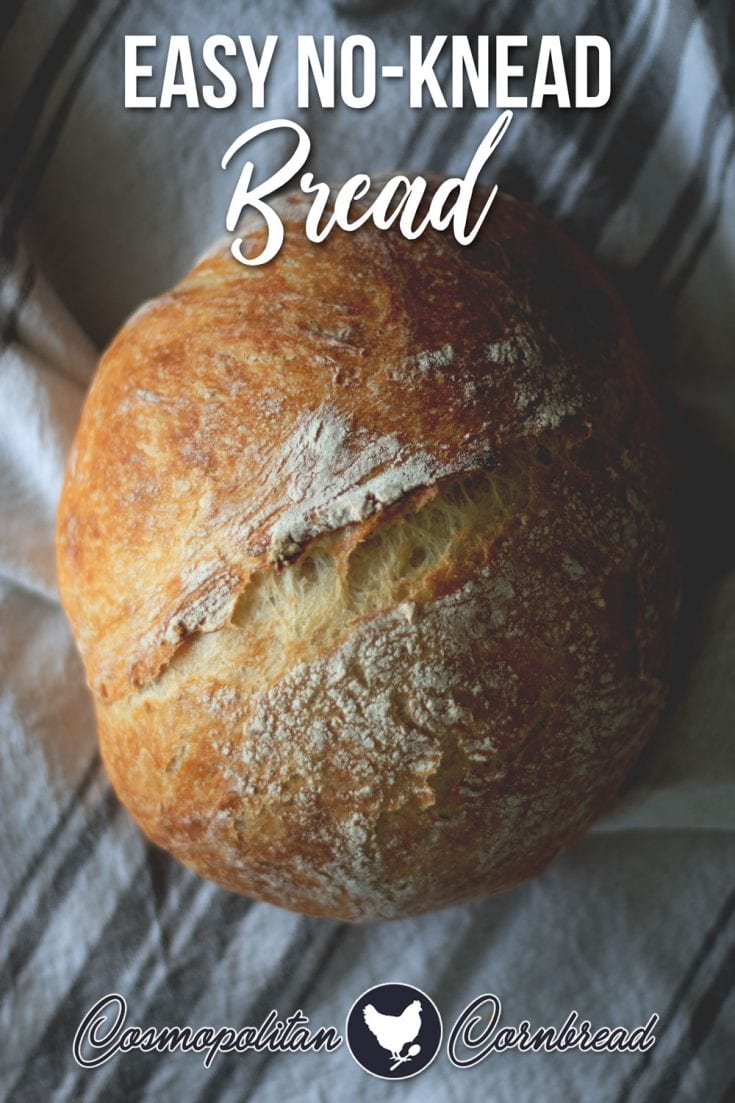 How to Make Homemade Bread - Easy No-Knead Recipe that is great for beginners.   Cosmopolitan Cornbread