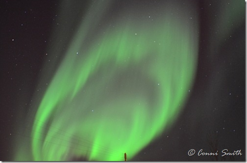 Aurora Borealis - Fairbanks Alaska - The Foodie Army WIfe