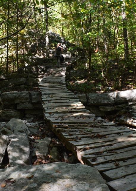 Monte Sano | Huntsville Hiking