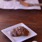 Double Chocolate Oatmeal Cookies