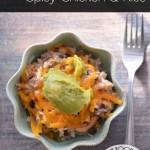 Crockpot Spicy Chicken & Rice | #WeekdaySupper