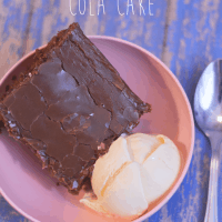 Double Chocolate Fudge Cola Cake