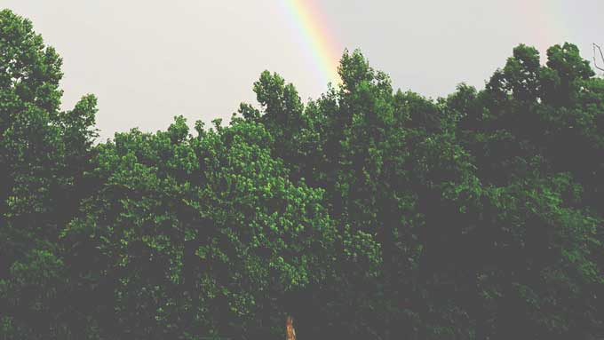 Wordless Wednesday: Rainbow | A Photography post from Cosmopolitan Cornbread