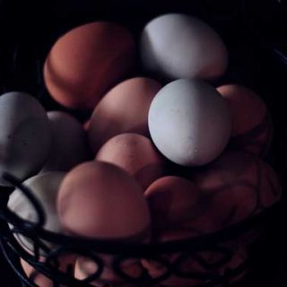 What are Pastured Eggs?