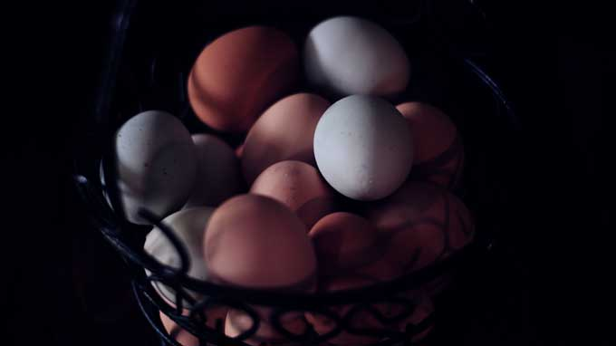 What are pastured Eggs? -Find out from Cosmopolitan Cornbread