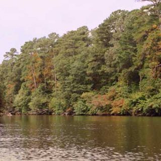 Kayaking on Flint Creek in Hartselle, Alabama