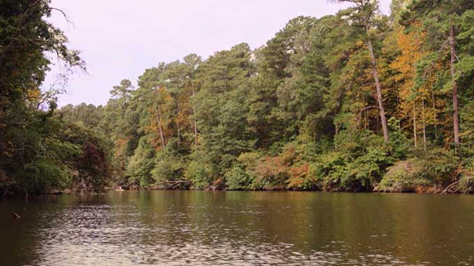 Kayaking on Flint Creek in Hartselle, Alabama | Cosmopolitan Cornbread