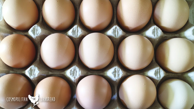 How to Store Farm Eggs
