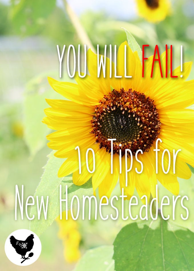 You Will FAIL! 10 Tips for New Homesteaders | Here's some tips to help you out if you are just getting started or thinking of homesteading.