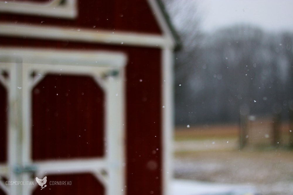 Snow in Alabama | A rare treat in a southern state. | Cosmopolitan Cornbread
