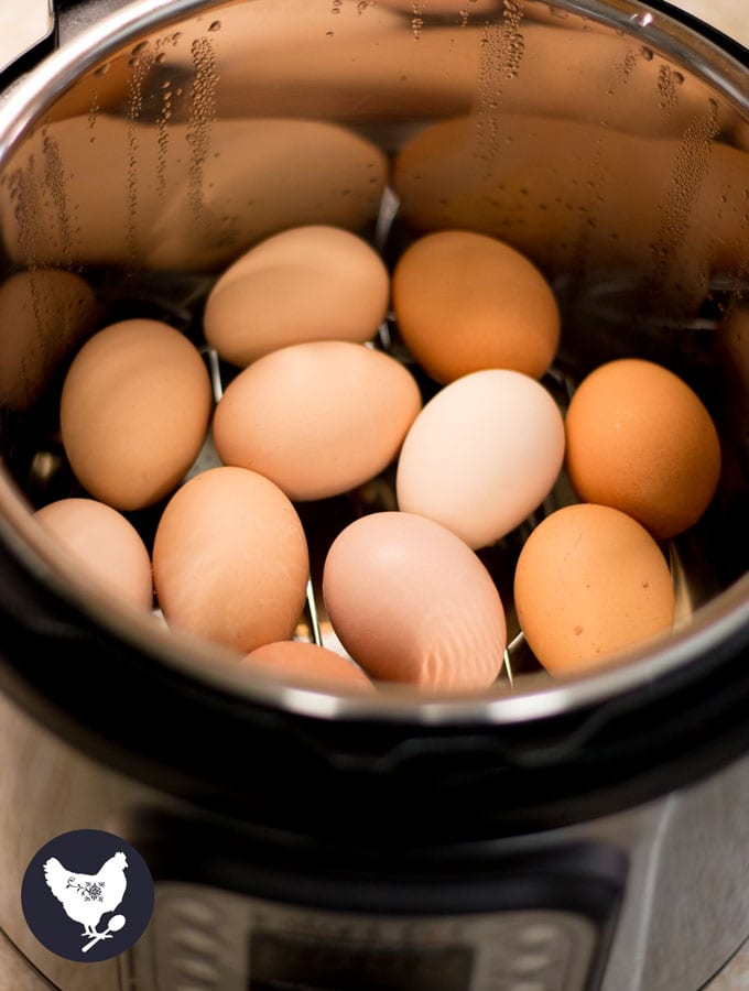 How to Make Perfect Hard Boiled Eggs (In the Instant Pot) This is the secret for easily peelable eggs - especially those fresh farm eggs that can never seem to come out of the shell! | Cosmopolitan Cornbread