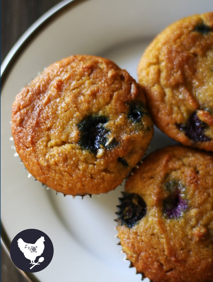 These blueberry muffins are stunning, delicious, and surprisingly paleo and gluten free.Get the recipe from Cosmopolitan Cornbread