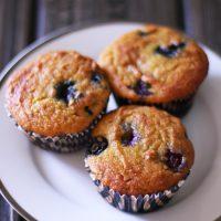 Paleo Blueberry Muffins (Gluten Free)