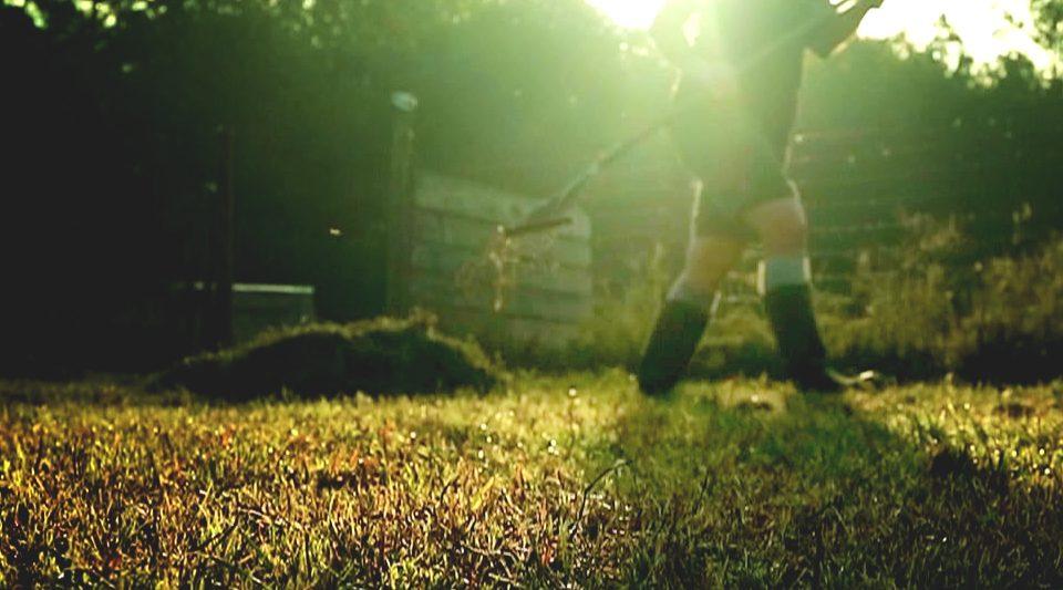 Putting the Garden to Bed | Cosmopolitan Cornbread