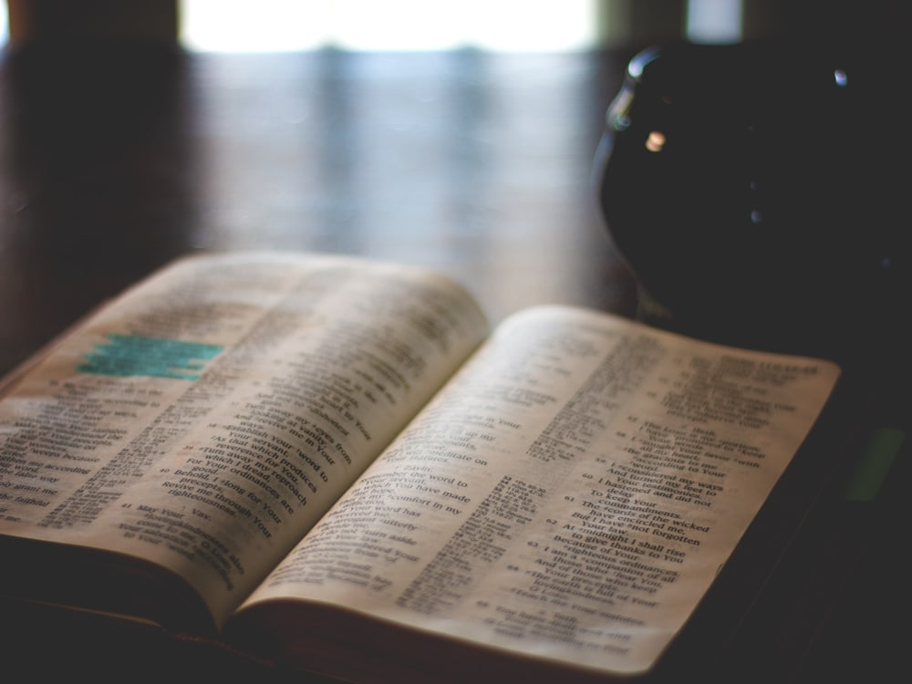 Old and New Testament Bible Reading Plan | Cosmopolitan Cornbread