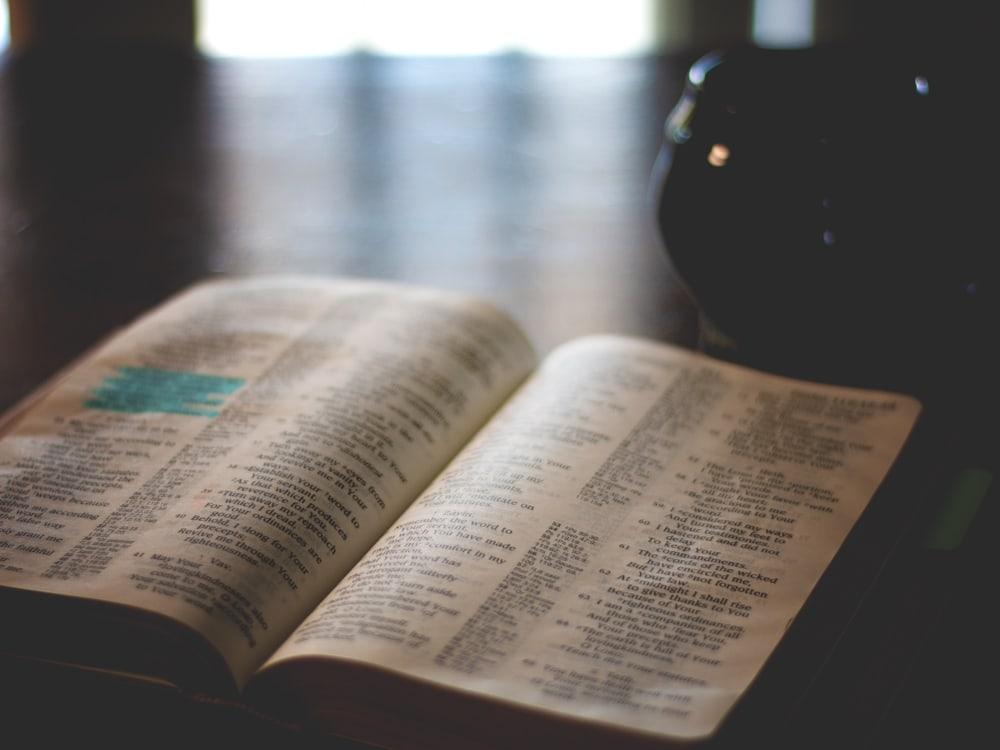Old And New Testament Bible Reading Plan Cosmopolitan Cornbread