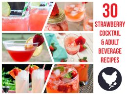 Because you can never have enough strawberry recipes - here's a collection of 30 Strawberry Cocktails and Adult Beverages. Perfect for spring or summer!