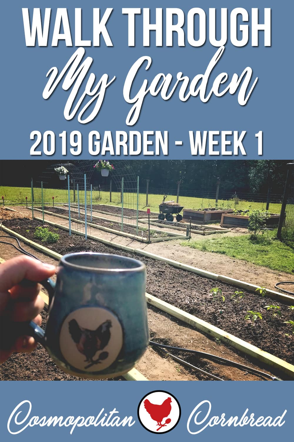 The garden is a week in. Let's take a walk through and see what I have planted in the main garden, and how it is laid out.