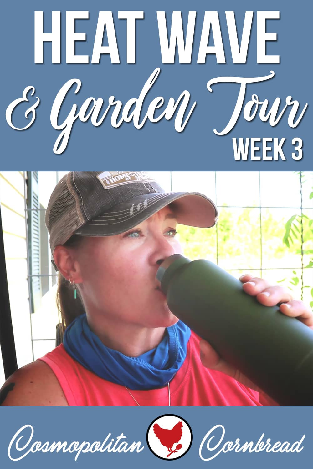 We are already in a major heat wave with temps in the 90s and heat indexes approaching 100! How I stay cool, and then a tour through the big garden.