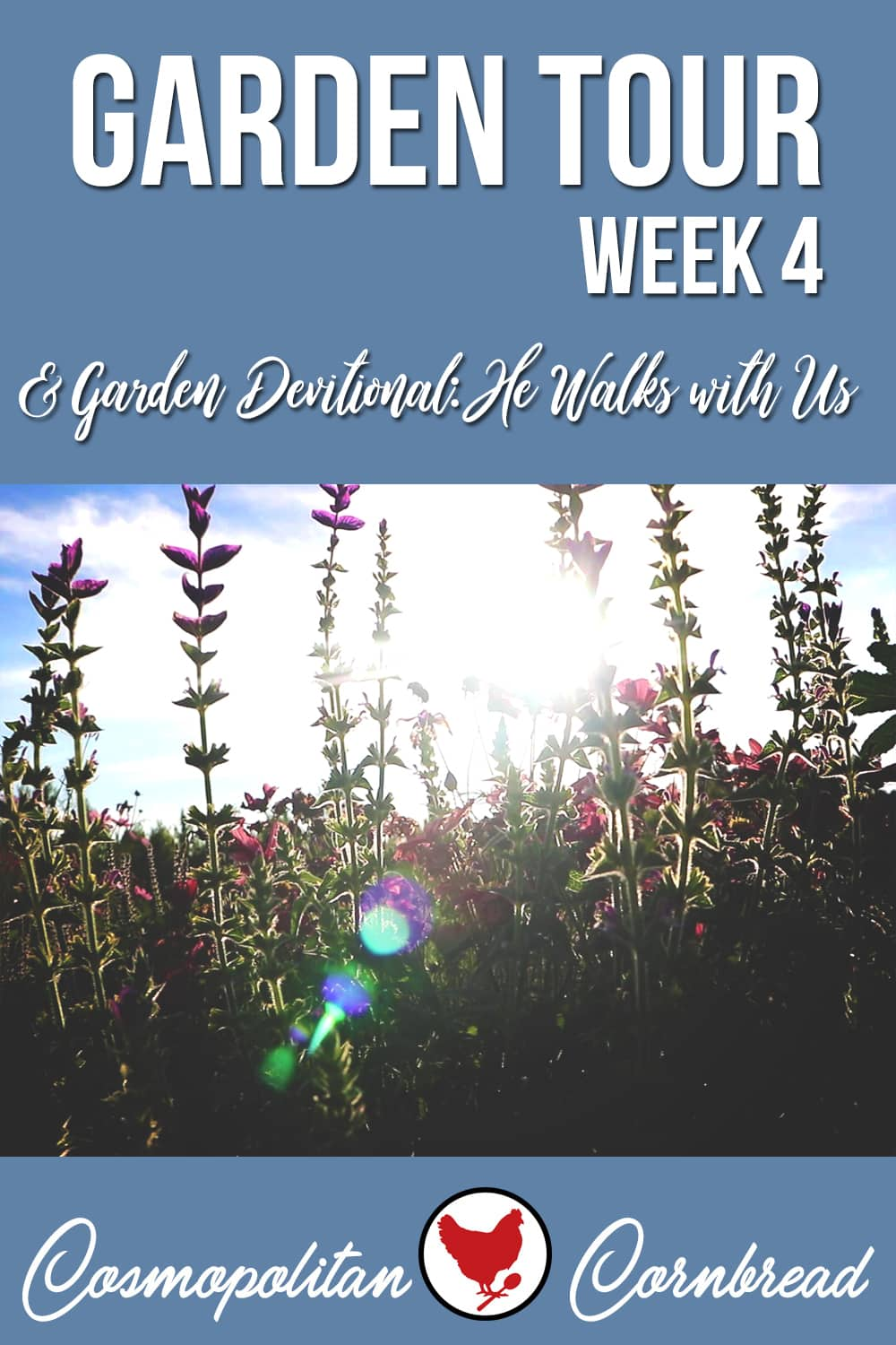 Week 4 of the garden, this is a full garden tour with a mini devotional.