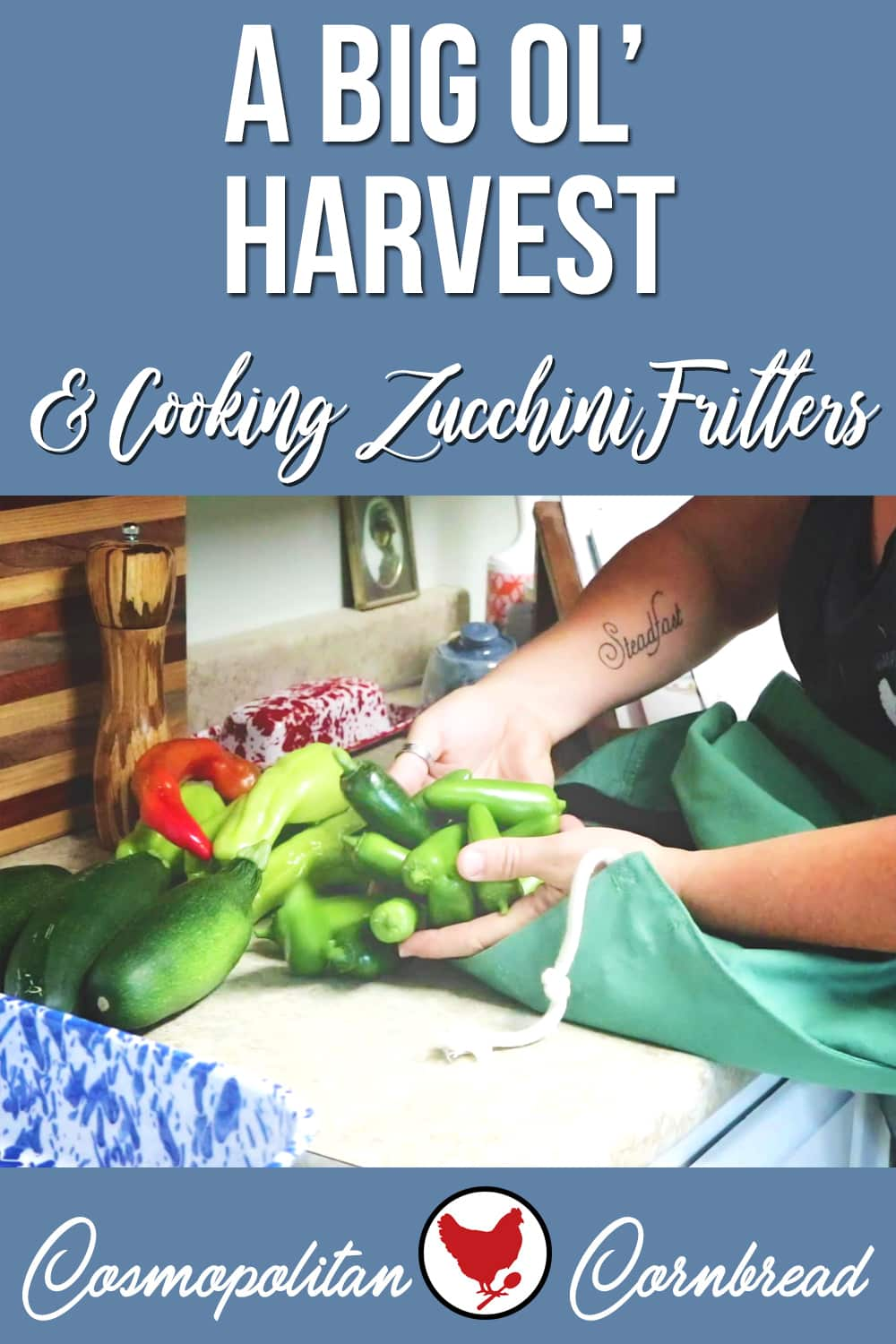 I had the biggest harvest of the garden so far, including three more zucchini. So I made some zucchini fritters and showed you how. YUM!
