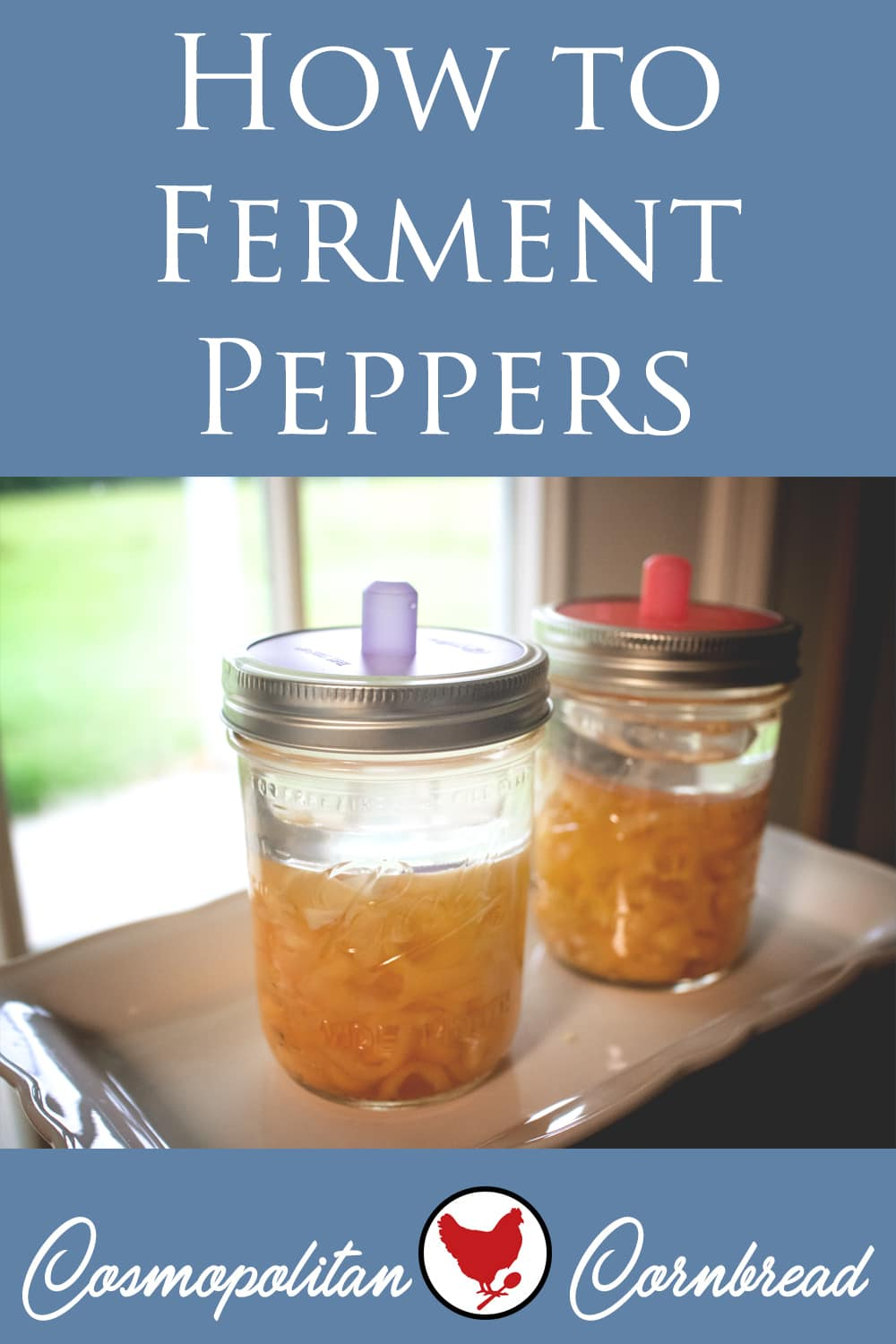 Fermenting foods is a great (and healthy) way to use some of the garden bounty. Learn how to do a simple pepper fermentation.