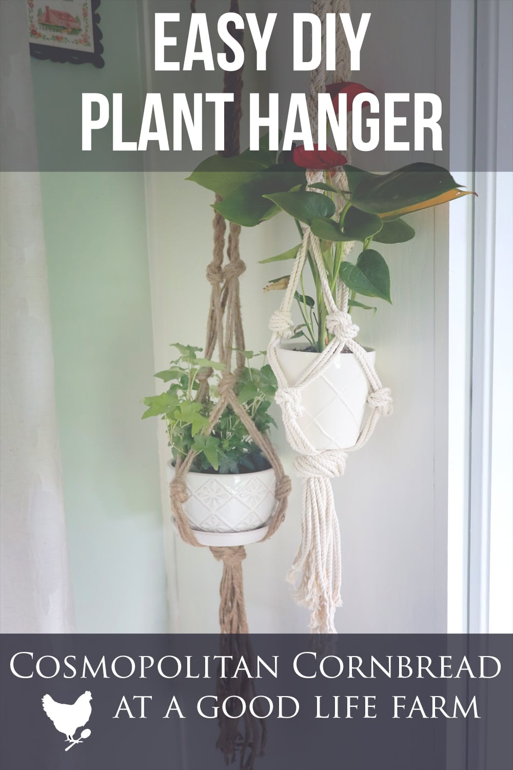 How to Make an Easy DIY Plant Hanger | Farmhouse style #natural