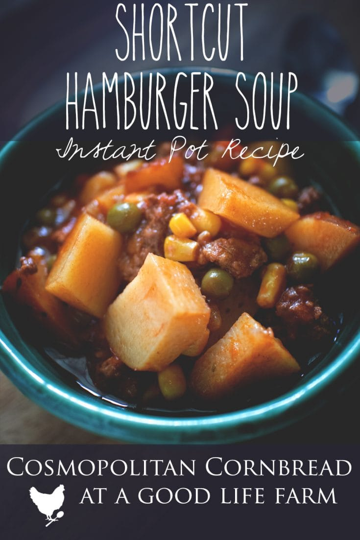 Flavorful and filling, this Shortcut Hamburger Soup, made in your Instant Pot, will please even the pickiest of eaters.