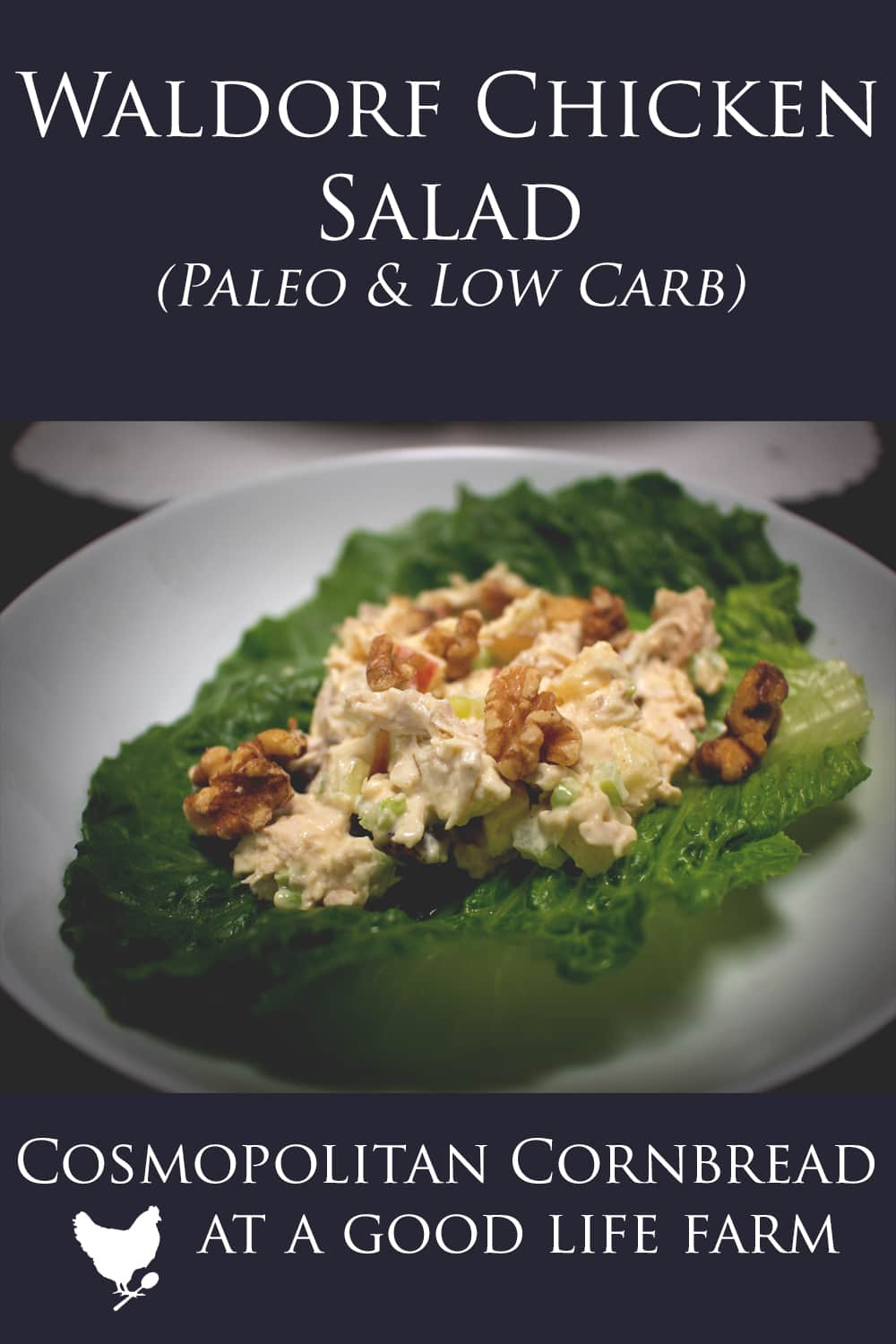Easy and Delicious Waldorf Chicken Salad. This recipe is low carb & paleo friendly.