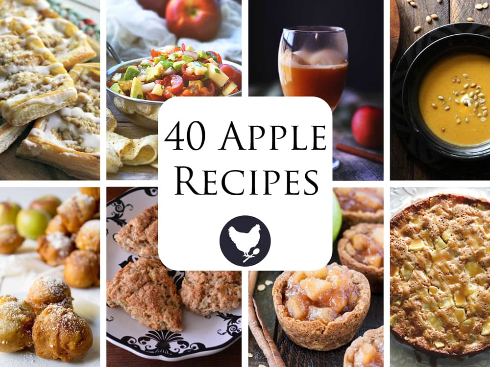 40 Apple Recipes - All the recipes you need to enjoy apple season!