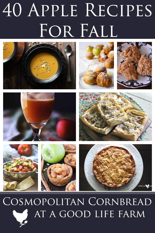 40 Apple Recipes - All the recipes you need to enjoy apple season!