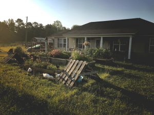 How We Chose Our Homestead - The factors that played a part in deciding which property we wanted for our homestead, and why we settled in northern Alabama.