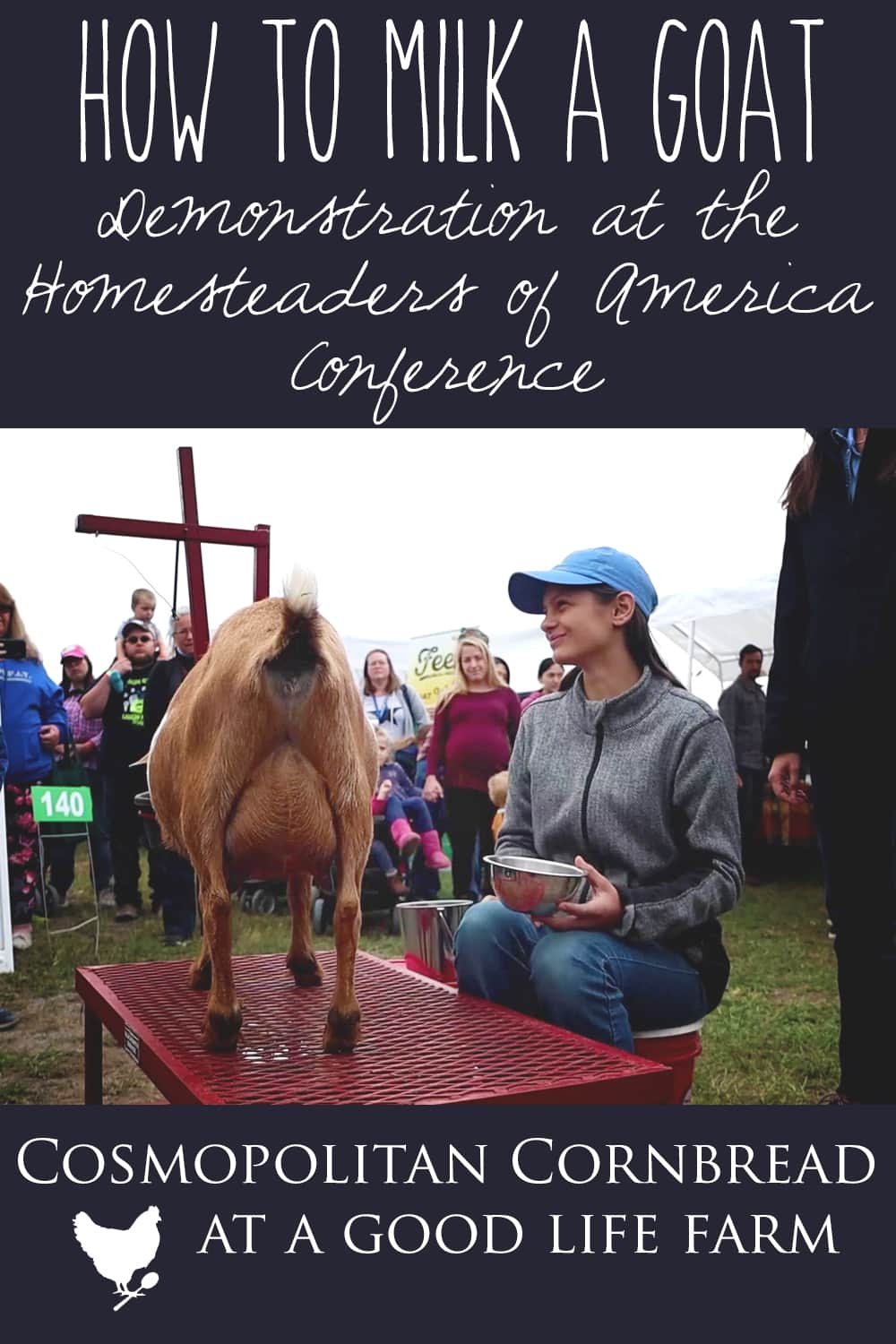 How to Milk a Goat - This goat milking demonstration was put on by Dawson Gap Farm at the 2019 Homesteaders of America Conference.