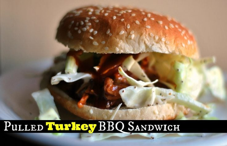 Pulled Leftover Turkey BBQ Sandwich