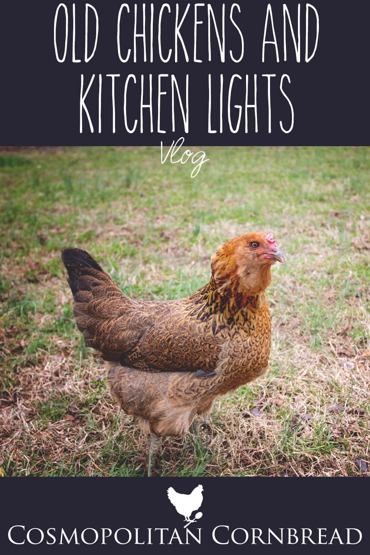 old chickens and kitchen lights - Cosmopolitan Cornbread vlog