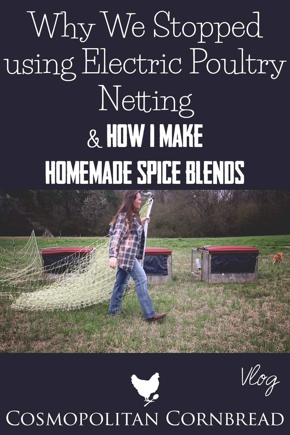 In this episode, I shared how I make my own spice blends from dried peppers and herbs, and why we stopped using the electric poultry netting/fencing for our chickens.
