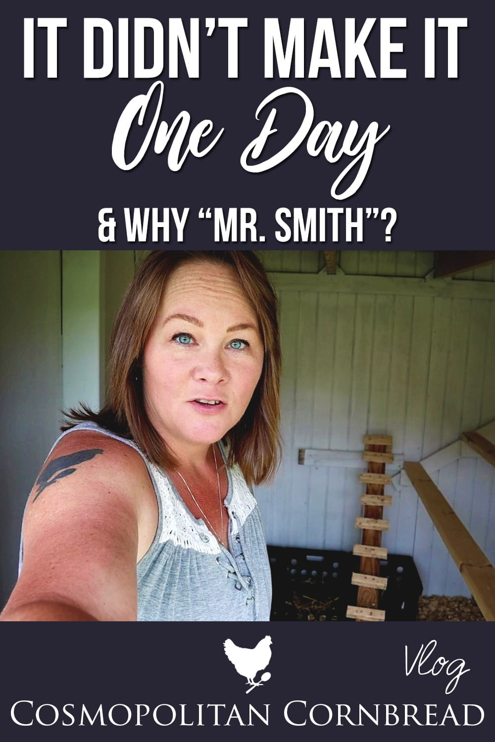 """We just finished the new chicken coop and in less than 24 hours, we had to make some changes to it. Also --- Why do I call my husband """"Mr. Smith""""?"""